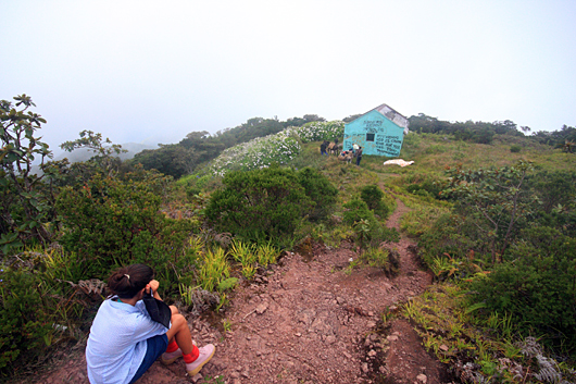 Hiking In The Blue Mountains With Mysilversands Jamaica Villas