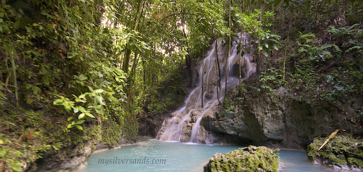 somerset falls portland jamaica, a day trip from silver sands villas