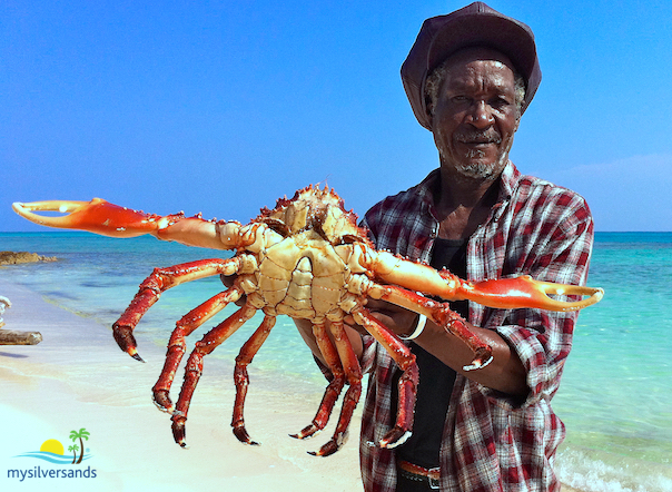 big john with queen crab
