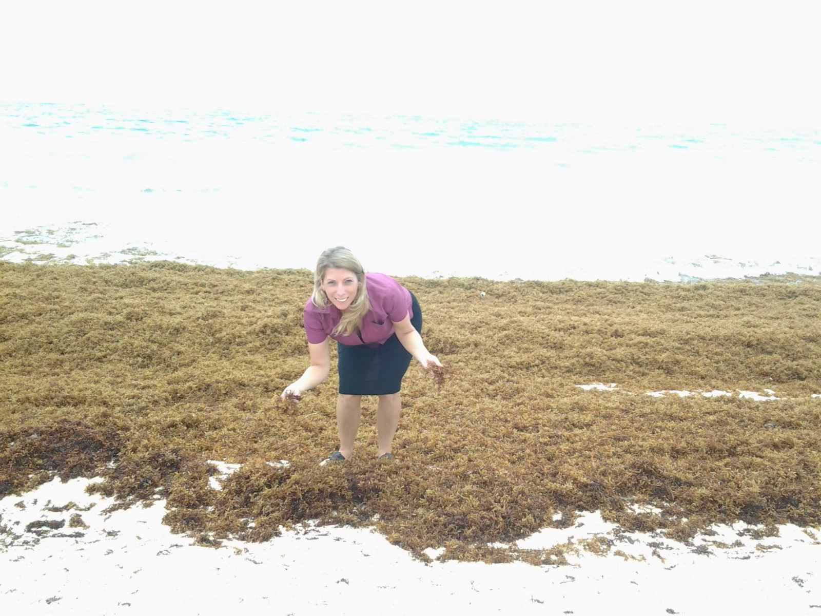 jenny in the sargassum seaweed
