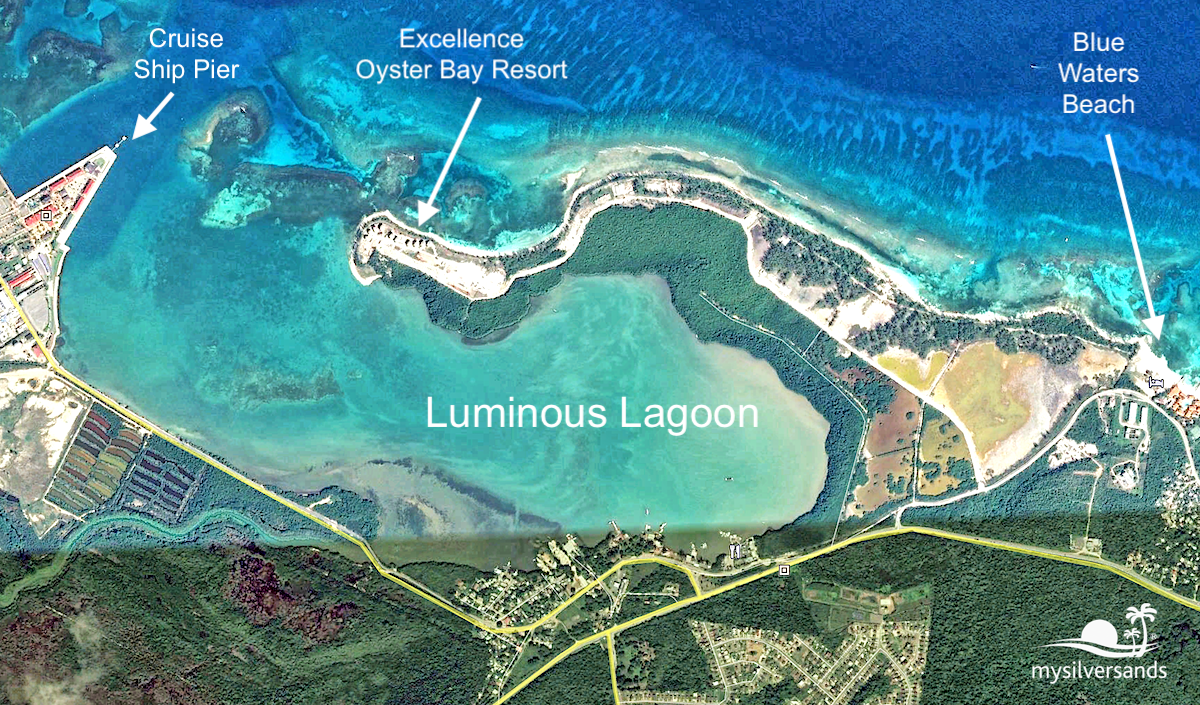 the luminous lagoon