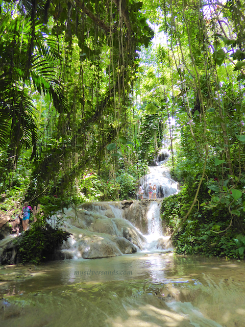 Turtle River Falls And Gardens In Ocho Rios Jamaica