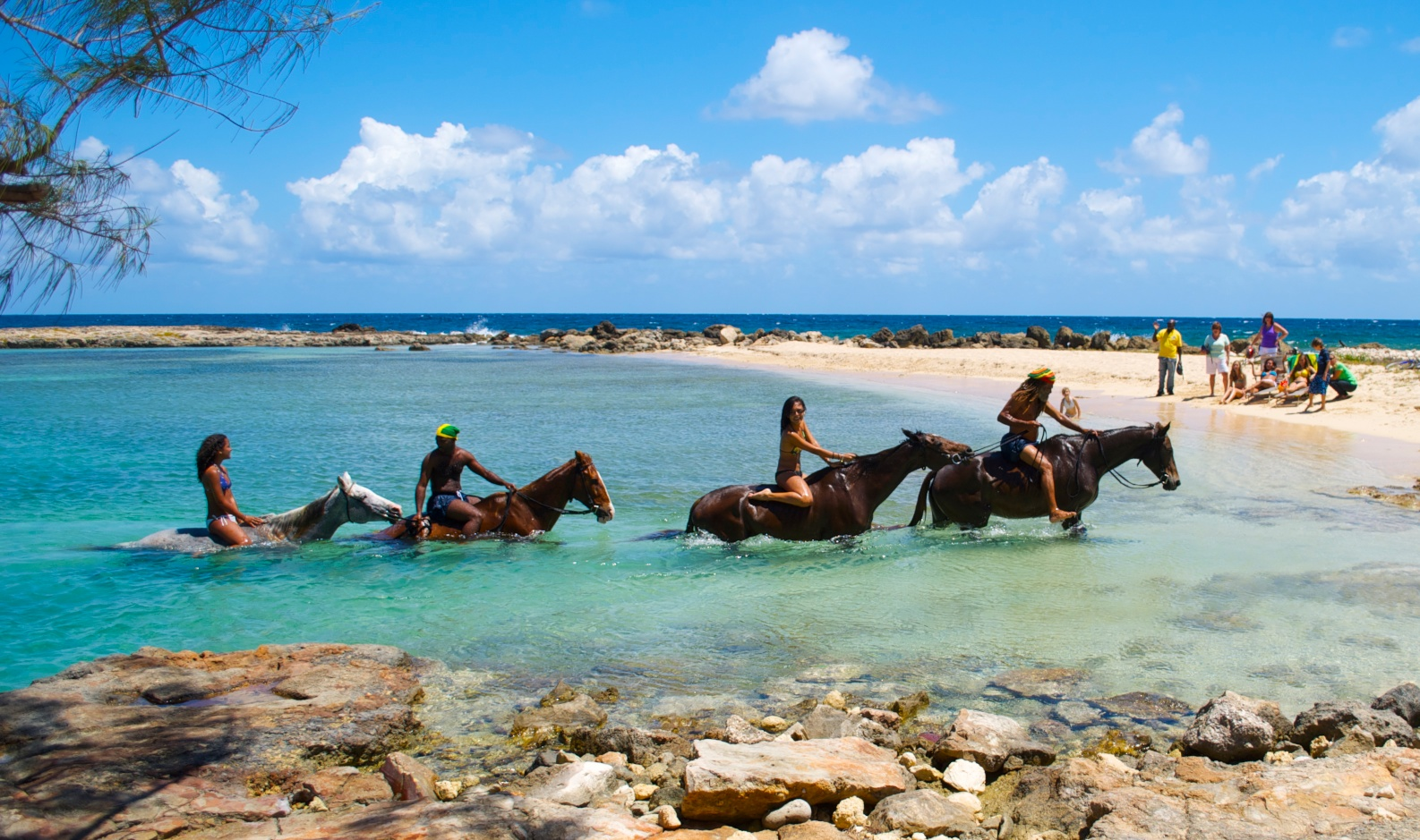 braco stables horesback riding in the sea