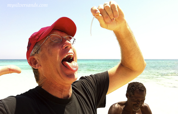 geoff gibson eats the conch worm at endless summer villa in silver sands jamaica