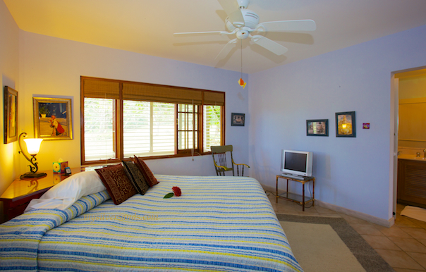 Bedroom 2 of Rock Hill Villa is furnished with a king bed.